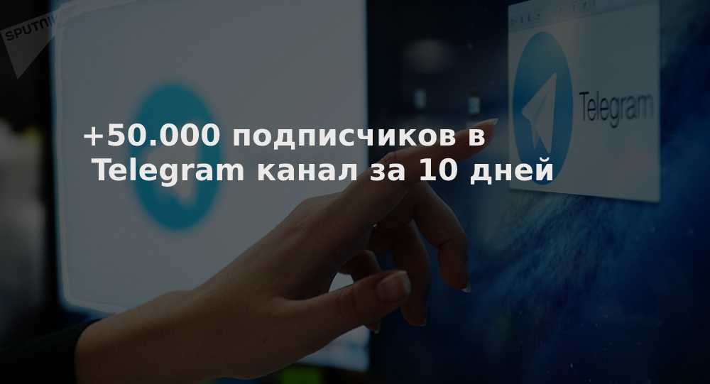подписчиков в Telegram